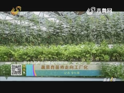 【第十九届寿光菜博会特别节目】蔬菜育苗将走向工厂化