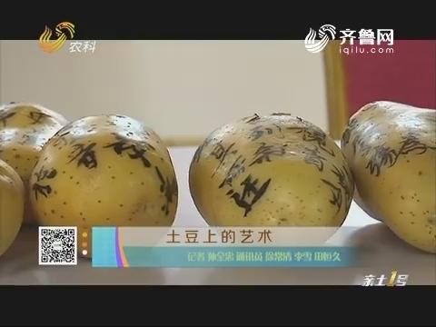 土豆上的艺术