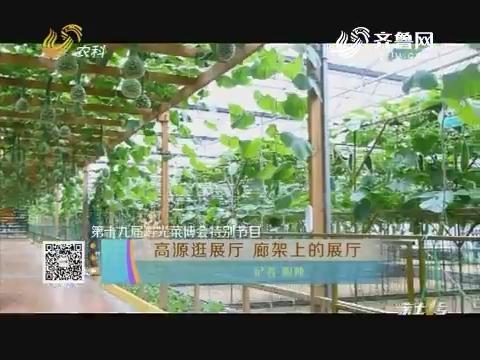 【第十九届寿光菜博会特别节目】高源逛展厅 廊架上的展厅