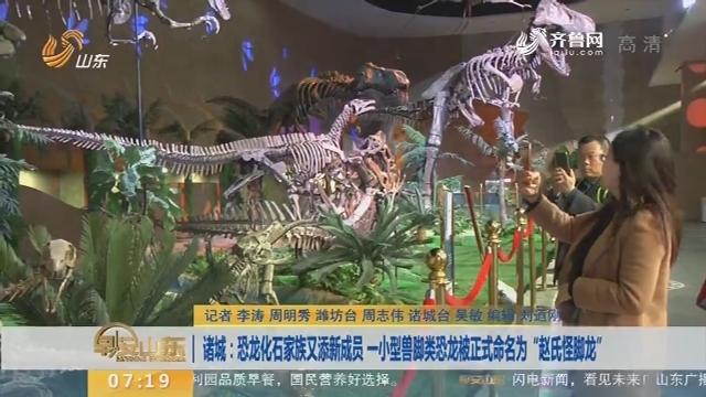 """【闪电新闻排行榜】诸城:恐龙化石家族又添新成员 一小型兽脚类恐龙被正式命名为""""赵氏怪脚龙"""""""