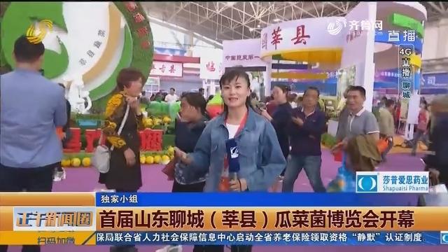 【4G直播】首届山东聊城(莘县)瓜菜菌博览会开幕