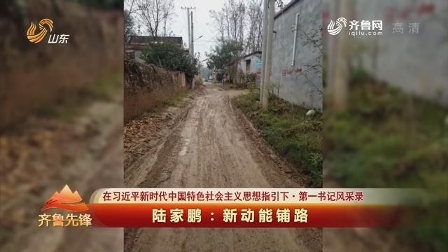 20180429《齐鲁先锋》:在习近平新时代中国特色社会主义思想指引下·第一书记风采录 陆家鹏——新动能铺路