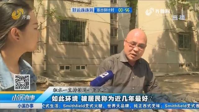 济南:如此环境 被居民称为近几年最好?