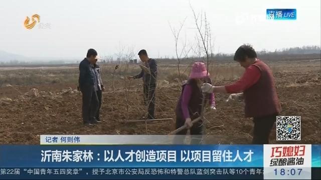 沂南朱家林:以人才创造项目 以项目留住人才