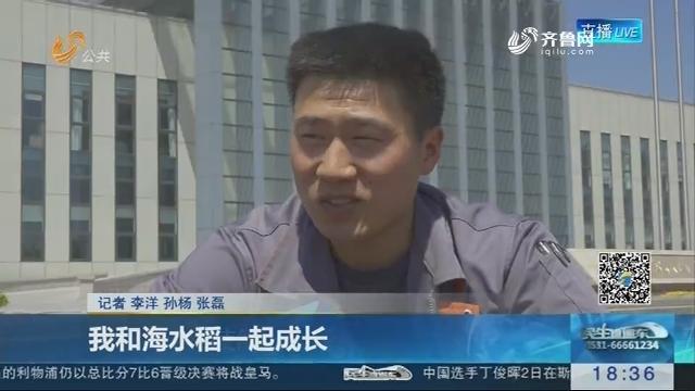 青岛:我和海水稻一起成长