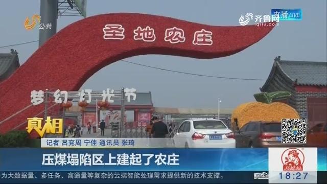 【真相】宁阳:压煤塌陷区上建起了农庄