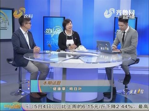 """20180505《农科直播间》:""""健康草""""明日叶"""