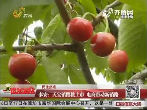 【民生热点】泰安:天宝镇樱桃上市 电商带动新销路