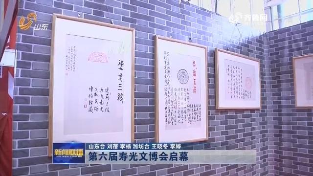 第六届寿光文博会启幕