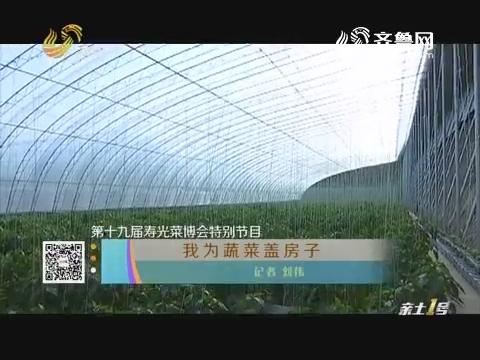【第十九届寿光菜博会特别节目】我为蔬菜盖房子