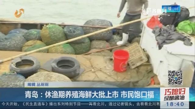 青岛:休渔期养殖海鲜大批上市 市民饱口福