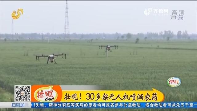济宁:壮观!30多架无人机喷洒农药
