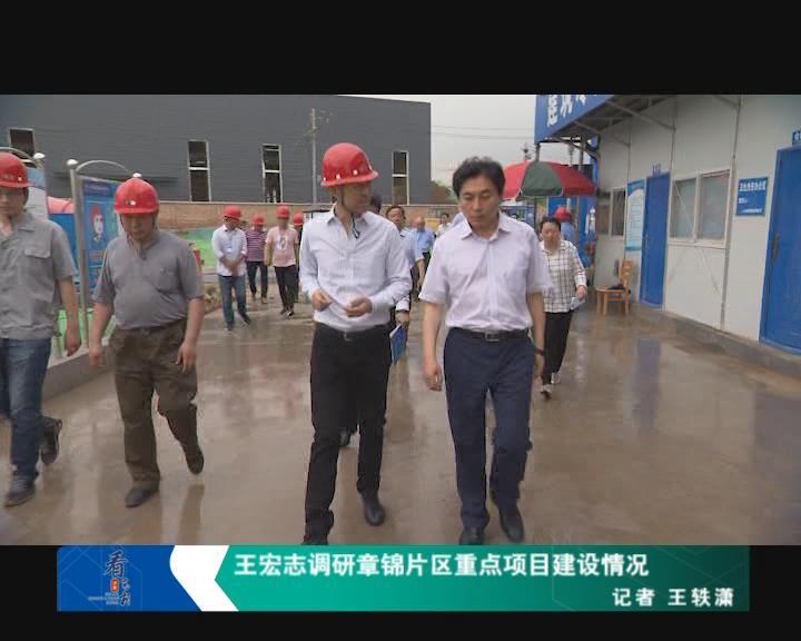 王宏志调研章锦片区重点项目建设情况
