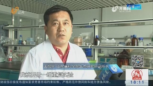 """【科技进步看亮点】微生物""""吃""""石油 污染土壤得以""""重生"""""""