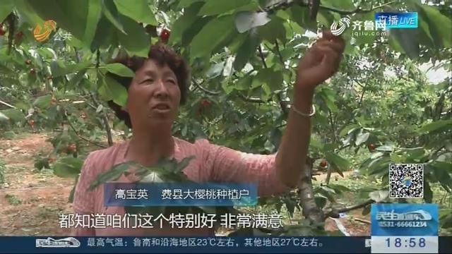 """临沂5月18日开通""""樱桃航班"""""""