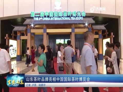 山东茶叶品牌亮相中国国际茶叶博览会