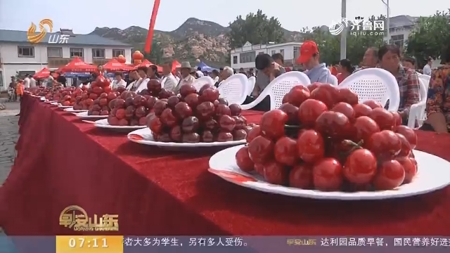【闪电新闻排行榜】临沂开通樱桃航班 新鲜樱桃24小时内直达广州深圳餐桌