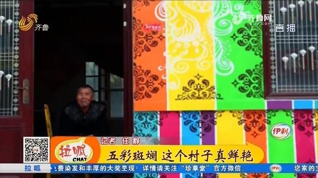 【齐鲁最美乡村】寿光:五彩斑斓 这个村子真鲜艳