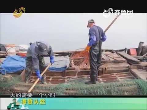 20180519《中国原产递》:海蜇头丝