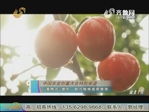 """20180520《农科直播间》:中国农业创富大会特别报道——""""垂柳式""""整形 助力樱桃提质增效"""