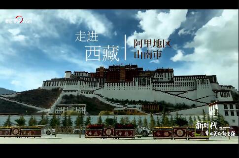 【新时代·幸福美丽新边疆】走进西藏