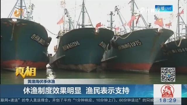【真相】黄渤海伏季休渔:休渔制度效果明显 渔民表示支持