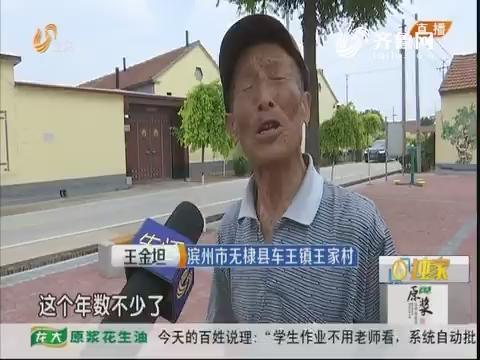 滨州:保护古村落 向生态要效益