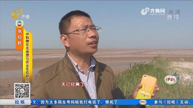 东营:黄河三角洲 民警夜晚救援