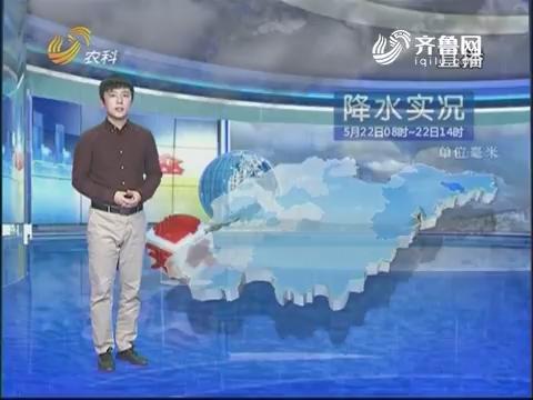 看天气:明后天气温上升 部分地区达到30摄氏度