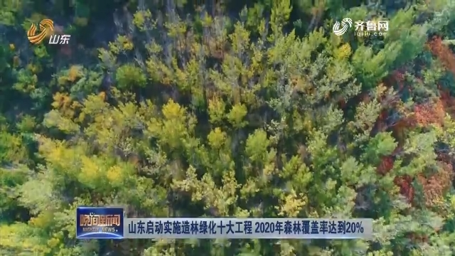 山东启动实施造林绿化十大工程 2020年森林覆盖率达到20%