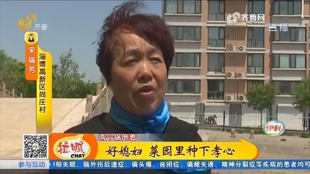 淄博:好媳妇 菜园里种下孝心