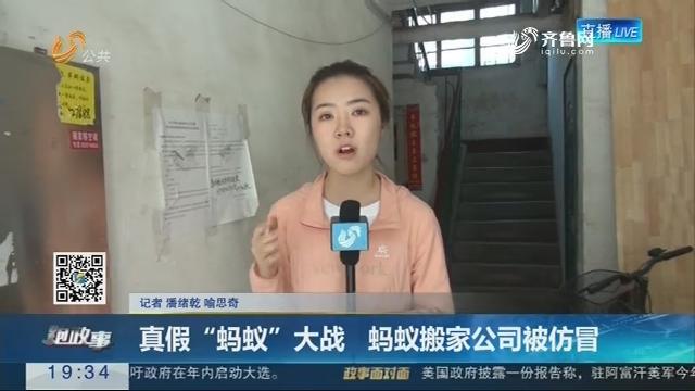 """【跑政事】真假""""蚂蚁""""大战 蚂蚁搬家公司被仿冒"""