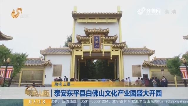 泰安东平县白佛山文化产业园盛大开园