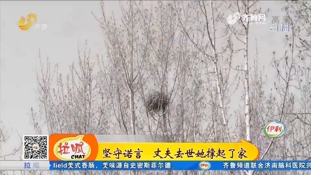 淄博:坚守诺言 丈夫去世她撑起了家