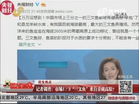 """【民生热点】记者调查:市场1/3""""三文鱼""""来自青藏高原?"""