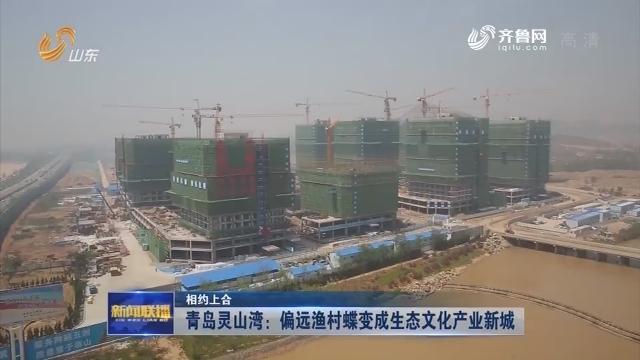 【相约上合】青岛灵山湾:偏远渔村蝶变成生态文化产业新城