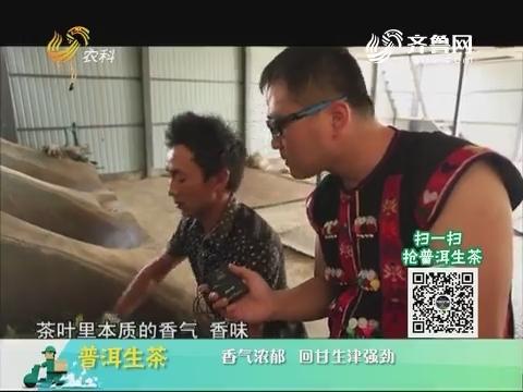 20180525《中国原产递》:普洱生茶