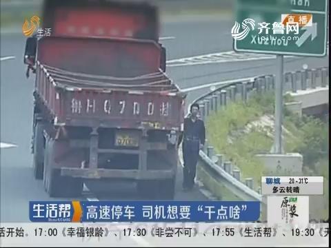 """济宁:高速停车 司机想要""""干点啥"""""""