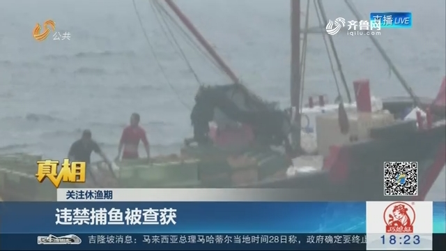 【真相】关注休渔期:违禁捕鱼被查获