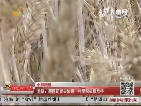 【小群跑腿】追踪:跑腿记者去协调 村里组织修危桥