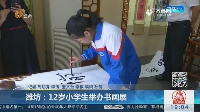 潍坊:12岁小学生举办书画展