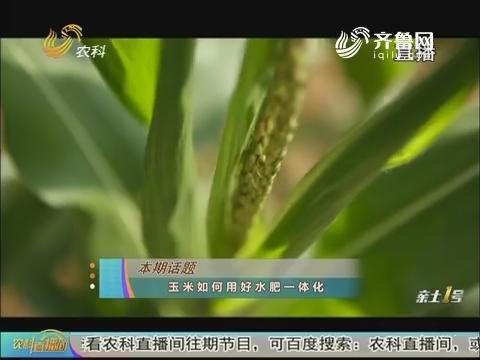 20180602《农科直播间》:玉米如何用好水肥一体化