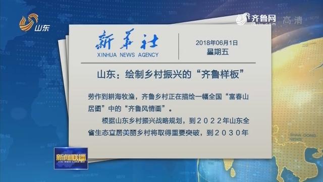 """【新华社文章】山东:绘制乡村振兴的""""齐鲁样板"""""""