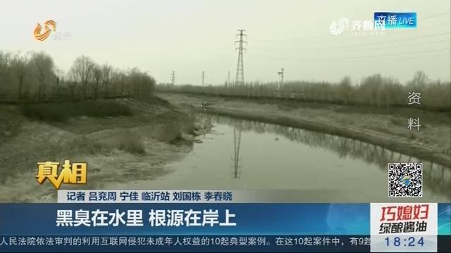 【真相】柳青河全流域治污 为黑臭水体开良方:黑臭在水里 根源在岸上