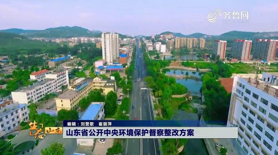 山东省公开中央环境保护督察整改方案