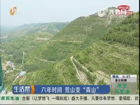 """潍坊:六年时间 荒山变""""青山"""""""