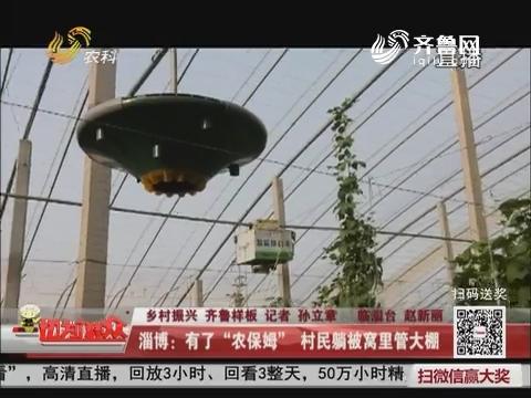 """【乡村振兴 齐鲁样板】淄博:有了""""农保姆"""" 村民躺被窝里管大棚"""