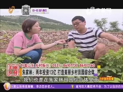 朱家林:两年投资13亿 打造美丽乡村田园综合体