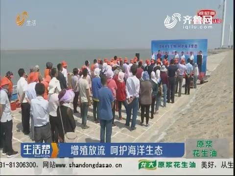 潍坊:增殖放流 呵护海洋生态