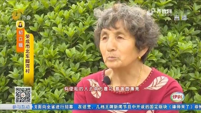 【齐鲁最美乡村】荣成花村:三百人家皆花匠